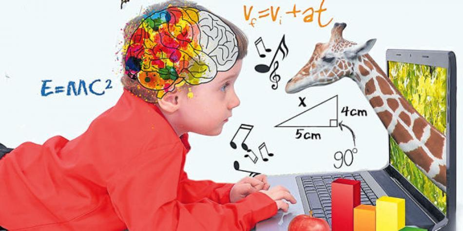 Filosofía y neuroeducación